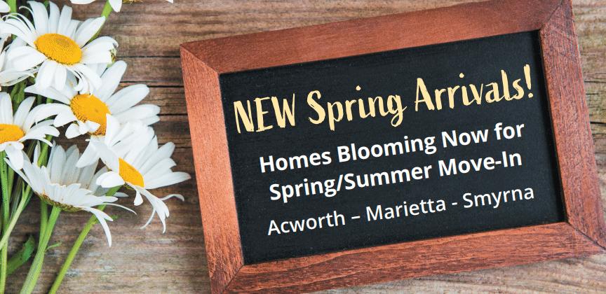Spring New Arrivals